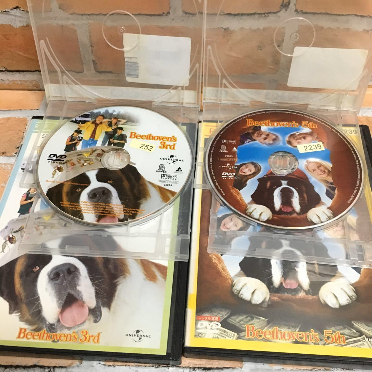 【レンタル落ちDVD】 ベートーベン3、5 DVD