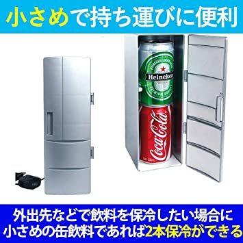 Felimoa ポータブル冷蔵庫 保冷 保温 缶 ペットボトル 飲料 持ち運び ミニ冷蔵庫 保温対応_画像5