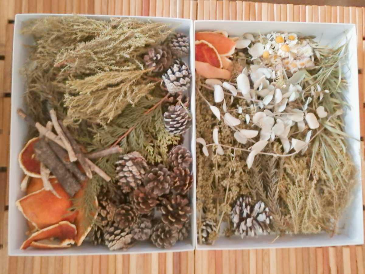ドライフラワー花材~「松ぼっくり ユーカリ オレンジ皮など詰め合わせセット♪」~~ #ハンドメイド素材 #ハーバリウム #ポプリ _画像1