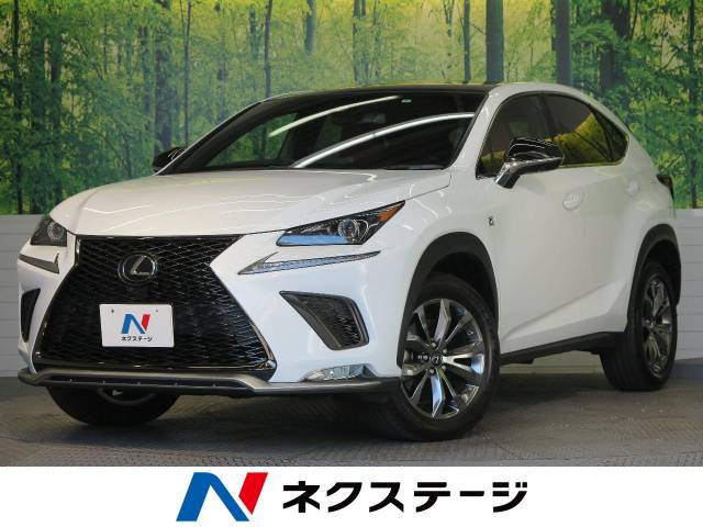 「平成31年 NX300 Fスポーツ @車選びドットコム」の画像1