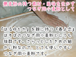 北海道産強力粉 春よ恋450g(春よ恋100%)蕎麦打ち つなぎ用小麦粉 製パン用小麦粉 そば打ちつなぎ用こむぎこ メール便対応_画像10