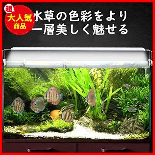 LEDGLE 水槽ライト ledアクアリウムライト 10W 39個LED 50~60cm対応 熱帯魚/観賞魚飼育・水草育成・水槽照明用 省エネ 長寿命 (39LED灯)_画像2
