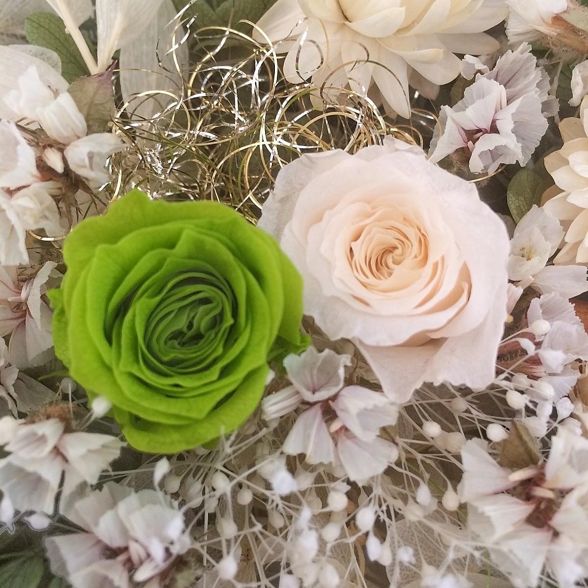 花材2 貝細工 ドライフラワー プリザーブドフラワー ハーバリウム花材