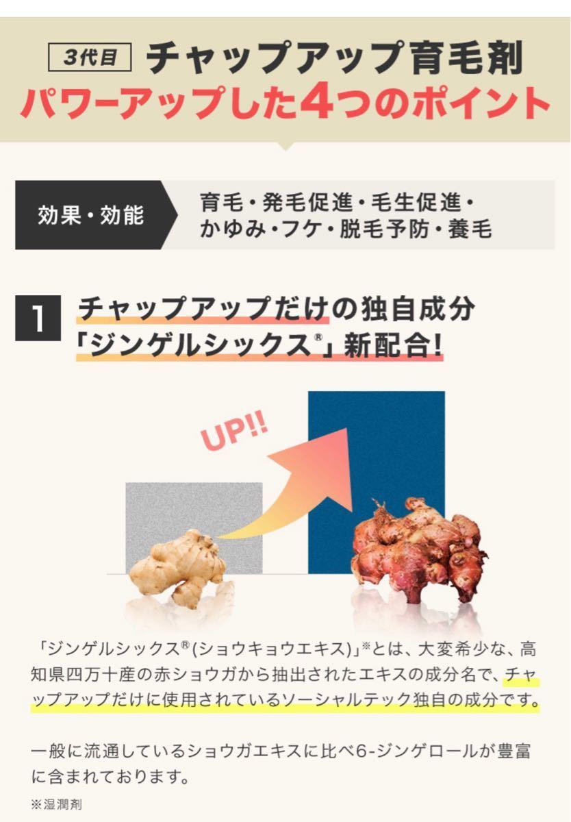 【2本セット】CHAPUP チャップアップ育毛剤