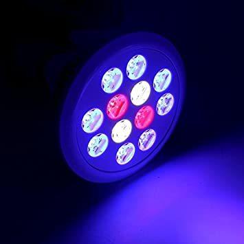 アクアリウムライト LEDライト 24W E26口金 青8 赤2 白2灯 水槽照明 熱帯魚 海水魚 水草 植物育成 海水 スポッ_画像3