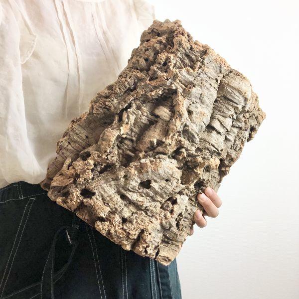 【T6737】★2枚組★ 板型 コルク樹皮 エアプランツ エアープランツ チランジア コウモリラン DIY テラリウム 洋蘭 天然素材 爬虫類_画像1
