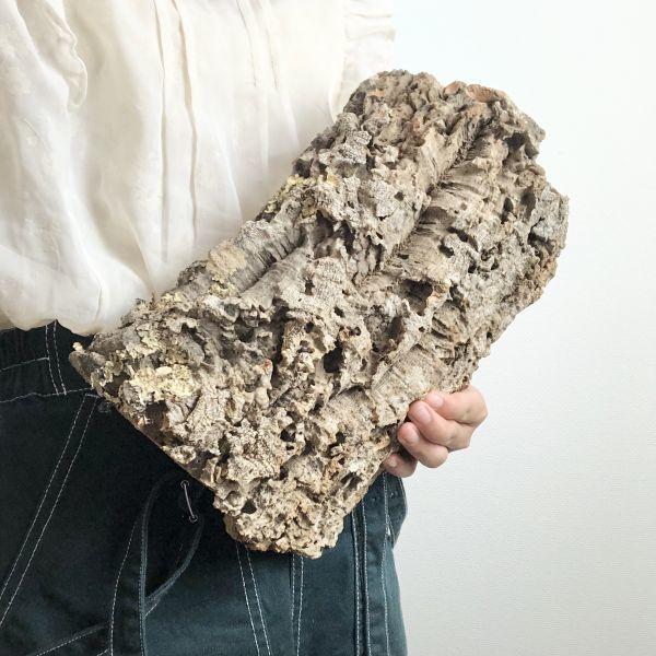 【T6735】★2枚組★ 板型 コルク樹皮 エアプランツ エアープランツ チランジア コウモリラン DIY テラリウム 洋蘭 天然素材 爬虫類_画像4
