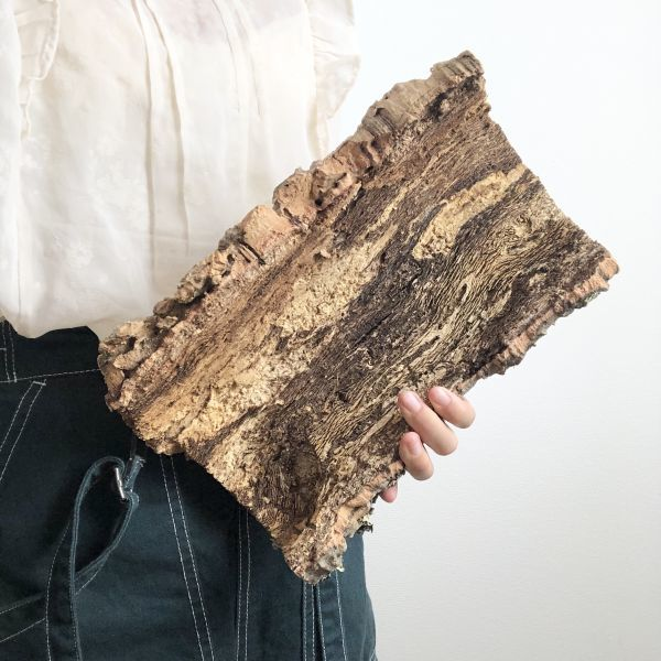【T6735】★2枚組★ 板型 コルク樹皮 エアプランツ エアープランツ チランジア コウモリラン DIY テラリウム 洋蘭 天然素材 爬虫類_画像5