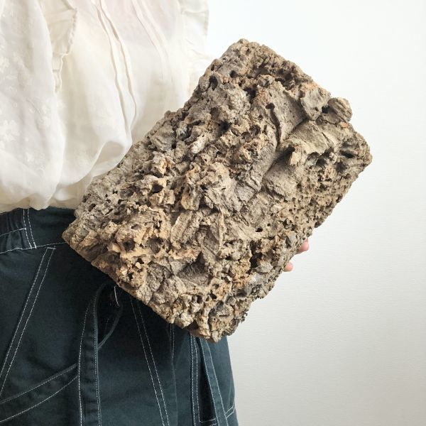 【T6735】★2枚組★ 板型 コルク樹皮 エアプランツ エアープランツ チランジア コウモリラン DIY テラリウム 洋蘭 天然素材 爬虫類_画像1