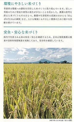 □セール□2kg 【精米】青森県産 白米 青天の霹靂 2kg 平成30年産_画像4