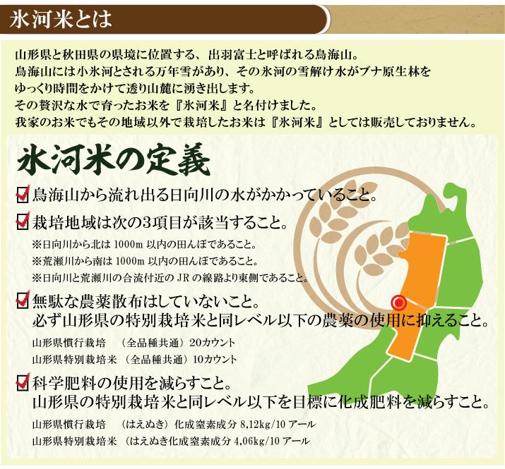 新米予約!!令和3年産 氷河米 コシヒカリ 白米5kg 山形県 庄内産 送料無料!_画像3
