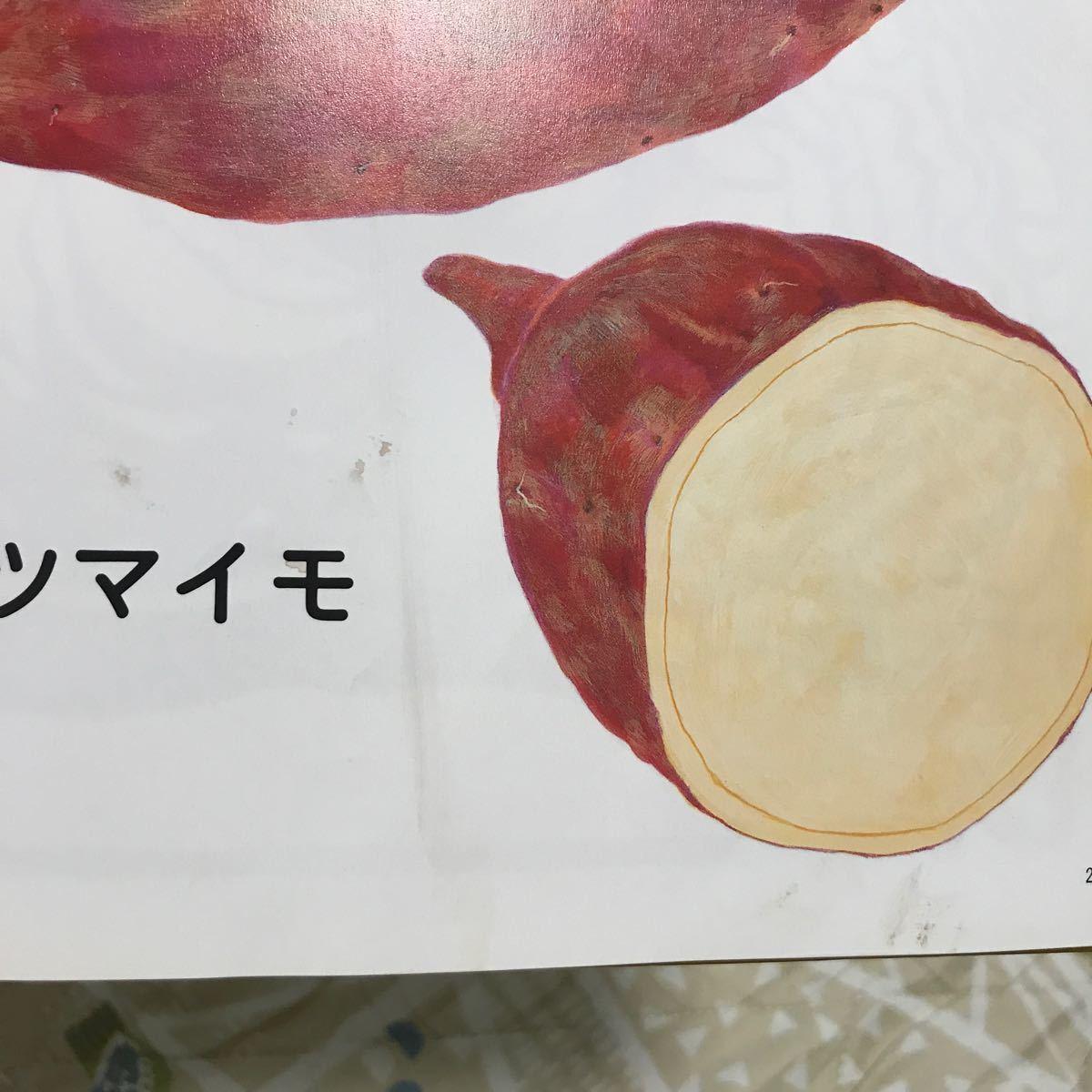 福音館 人気絵本 知育絵本 赤ちゃん絵本 くだもの がたんごとんがたんごとん やさいのおなか 保育園 幼稚園 家庭保育