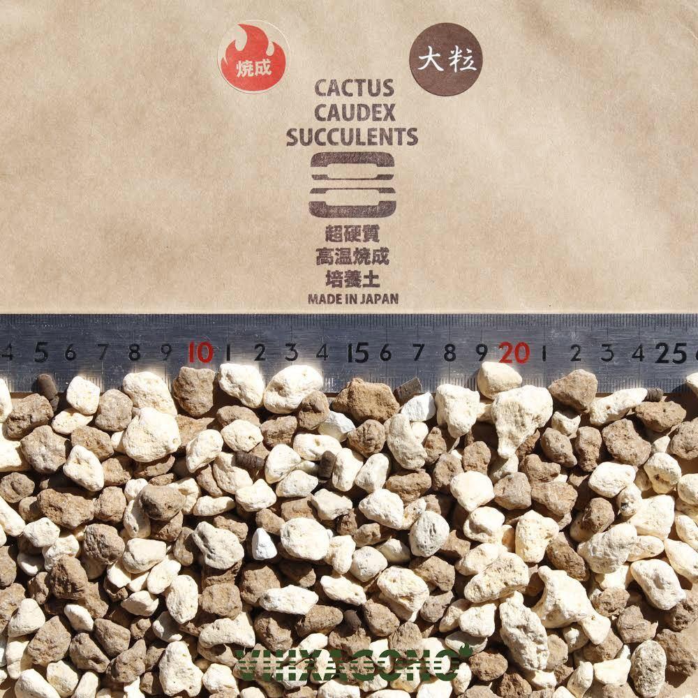【送無】 VIIIXAGONO 超硬質焼成培養土 3L×3袋 粒サイズ変更可能 コーデックス 多肉植物 アガベ パキプス サボテン エケベリア ハオルチア_画像6