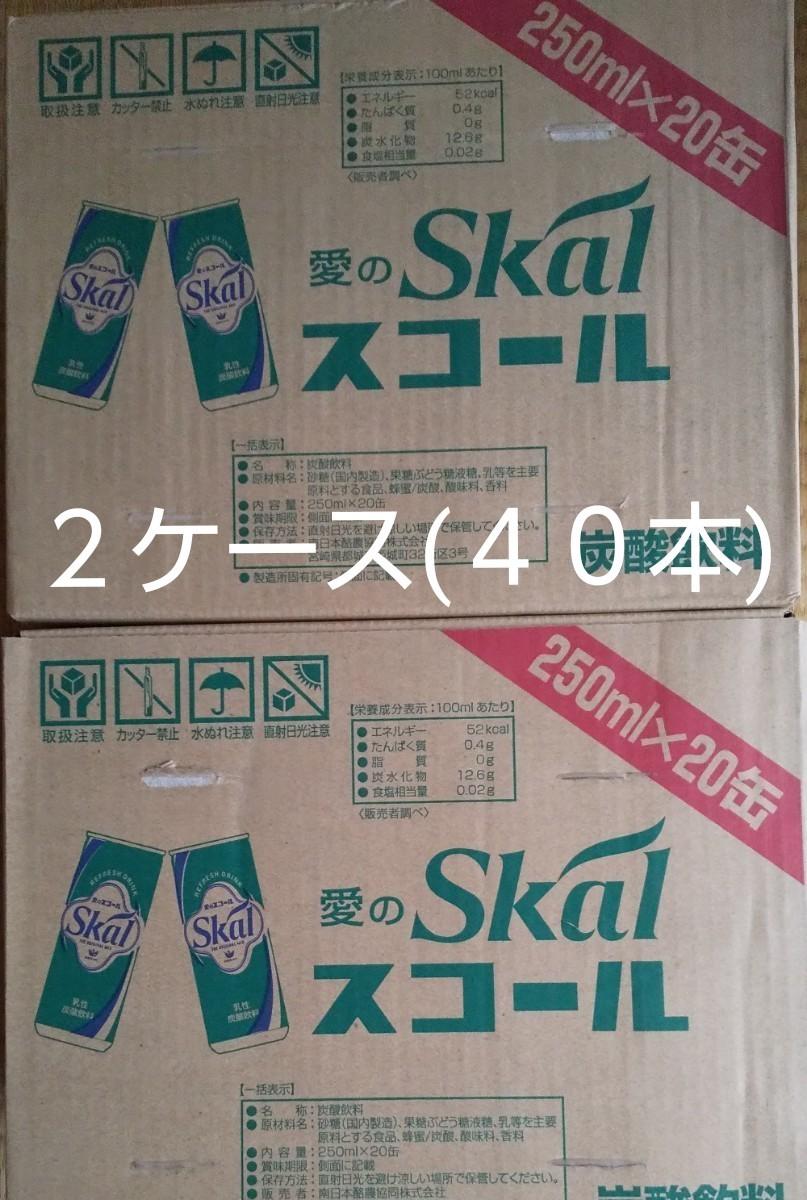 (限定値下げ中!)愛のスコール 250ml缶を40本です。(20本入り2箱)賞味期限22年8月4日。スコール美味しいよ(^_^)v