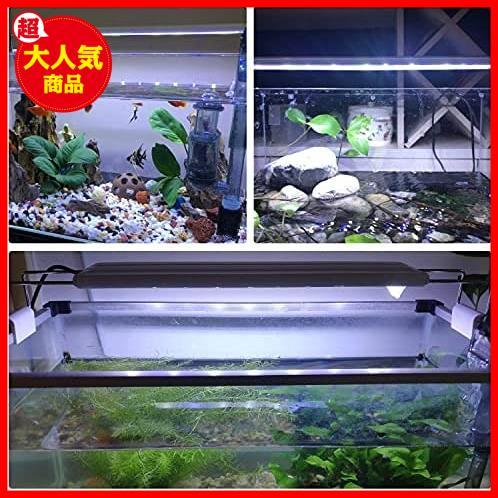 LEDGLE 水槽ライト ledアクアリウムライト 10W 39個LED 50~60cm対応 熱帯魚/観賞魚飼育・水草育成・水槽照明用 省エネ 長寿命 (39LED灯)_画像3