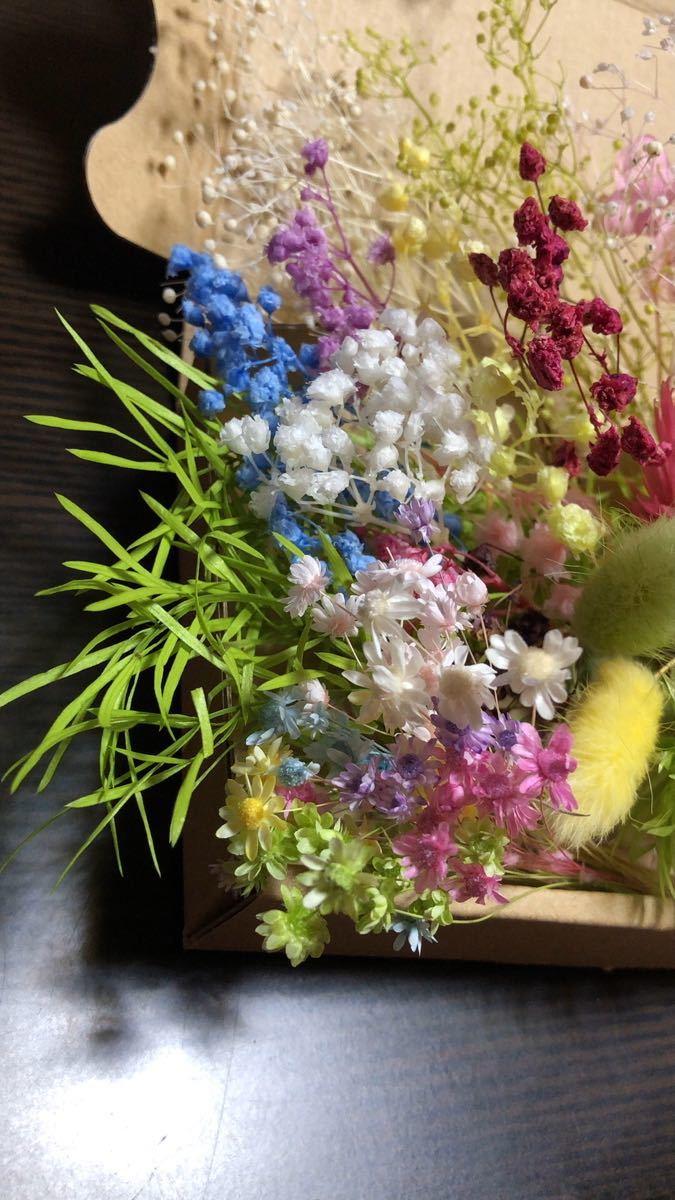 【P103】ハーバリウム花材 プリザーブドフラワー A6サイズ詰め合わせ 花材セット  ドライフラワー