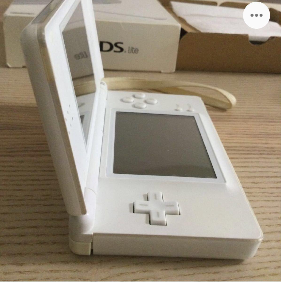 【液晶パネルジャンク品】ニンテンドーDS Lite  充電器 箱 説明書有り Nintendo  任天堂DS  DSライト セット