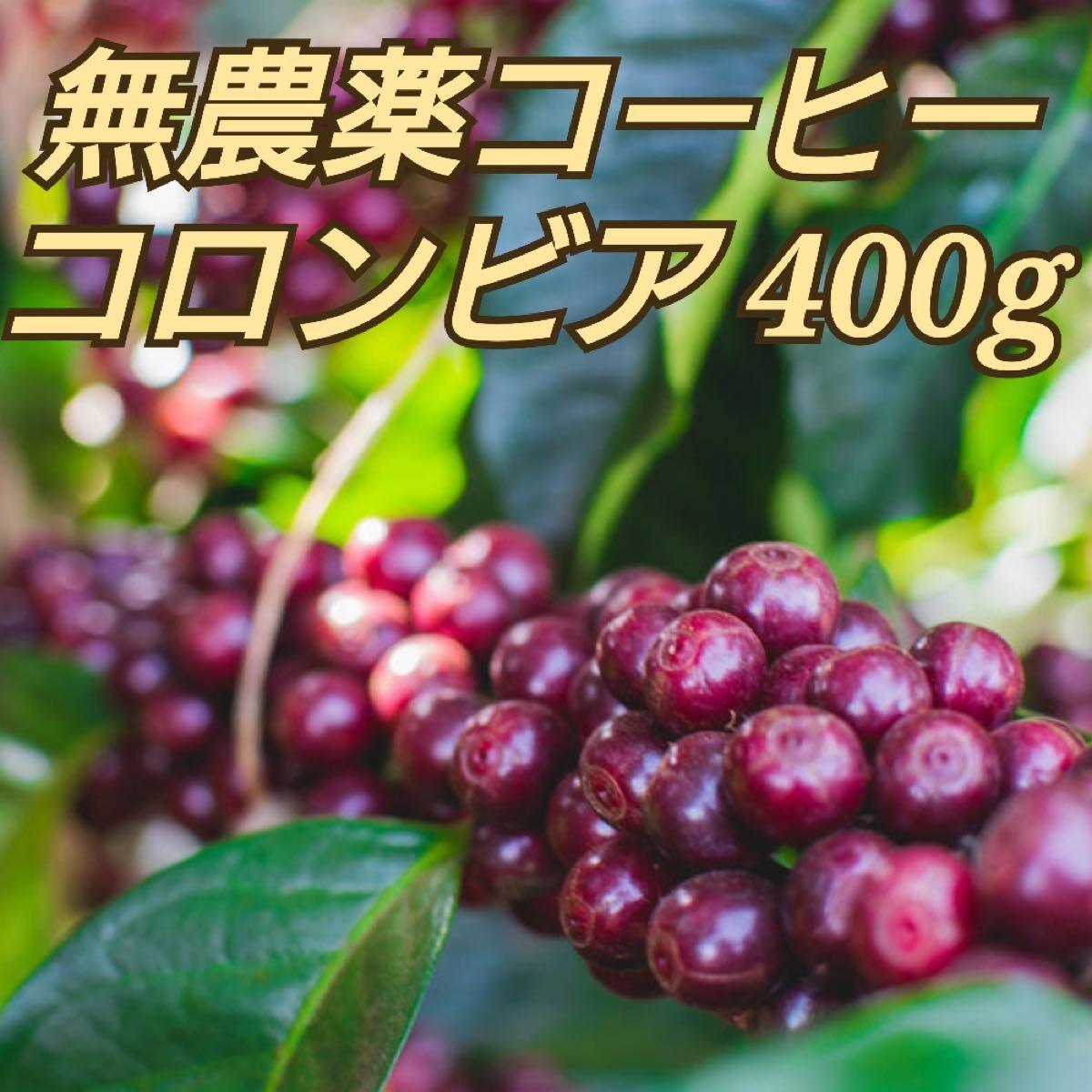 コーヒー 豆 無農薬 コロンビア400g  自家焙煎珈琲 オーガニック