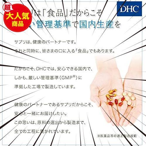 30食 (x 1) DHC イチョウ葉 脳内α(アルファ)30日分 【機能性表示食品】_画像6