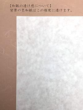 白 A4判 50枚 【.co.jp 限定】和紙かわ澄 OA和紙 雲水 白 A4判 50枚_画像4