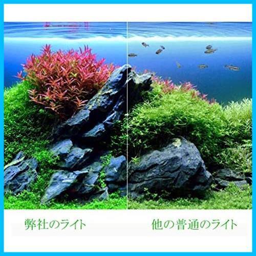 LEDGLE 水槽ライト ledアクアリウムライト 10W 39個LED 50~60cm対応 熱帯魚/観賞魚飼育・水草育成・水槽照明用 省エネ 長寿命 (39LED灯)_画像5
