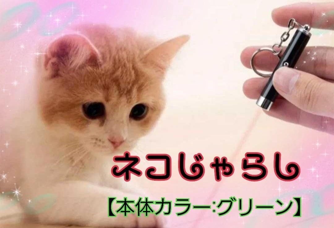 猫のおもちゃ 猫じゃらし【本体カラー:グリーン】電池付き
