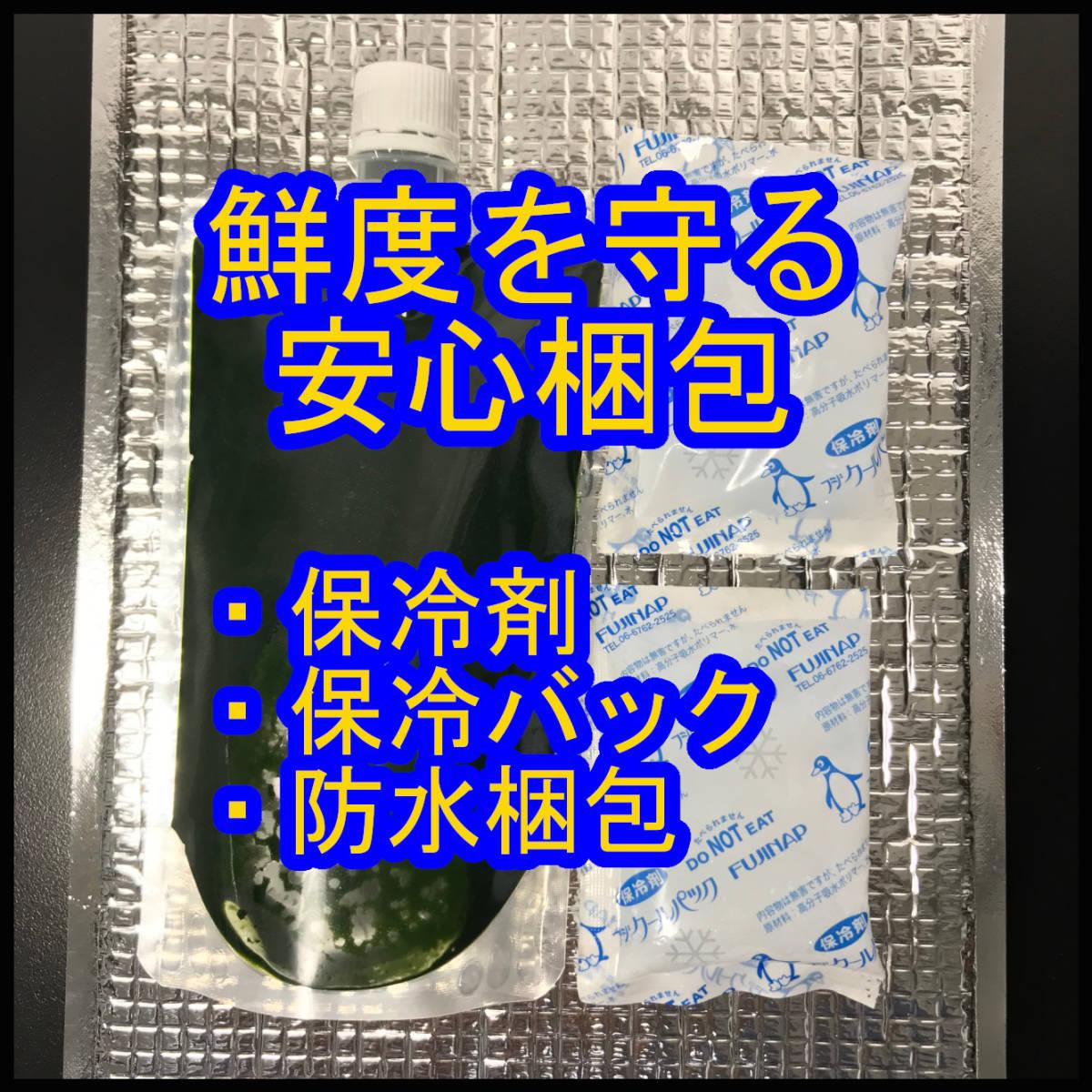 クール便★和香特選生クロレラ1200ml★即日発送★ミジンコめだか金魚らんちゅうの餌 針子稚魚の青水作 ワムシゾウリムシ生餌ミドリムシ_新鮮な状態で保冷発送します
