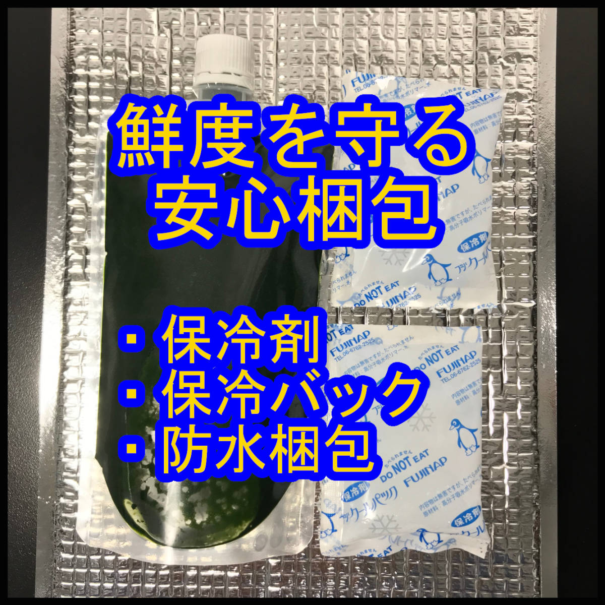 クール便★和香特選生クロレラ500ml★即日発送★ミジンコめだか金魚らんちゅうの餌 針子稚魚の青水作 ワムシゾウリムシ生餌ミドリムシ_新鮮な状態で保冷発送します