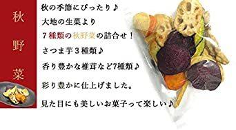 大地の生菓 7種類の秋野菜チップス 150g お菓子 おやつ スナック菓子 こども おつまみ ギフト ドライフルーツ_画像3