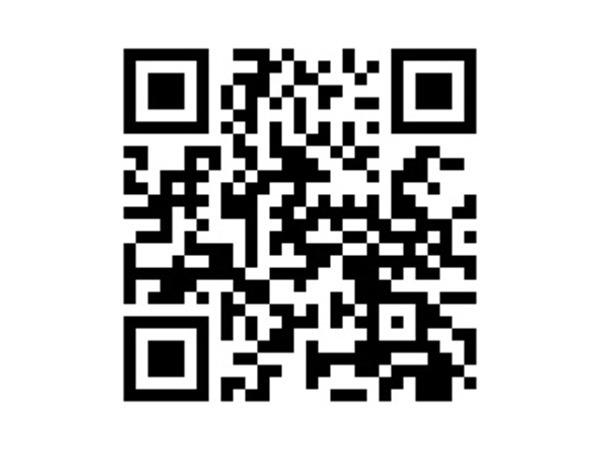 「ダイナ 3.0 ロング ジャストロー ディーゼルターボ パワーゲート付 床鉄平ボデー」の画像2