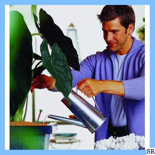 《*送料無料*》 SERAMIS 観葉植物 室内ガーデニング 室内園芸 200mL 室内観葉植物用液体肥料 セラミス 133_画像4