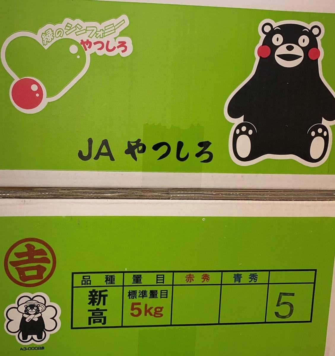 ~1円から~<熊本県産>新高梨 5玉 約5kg 訳あり 家庭用 ●_画像6