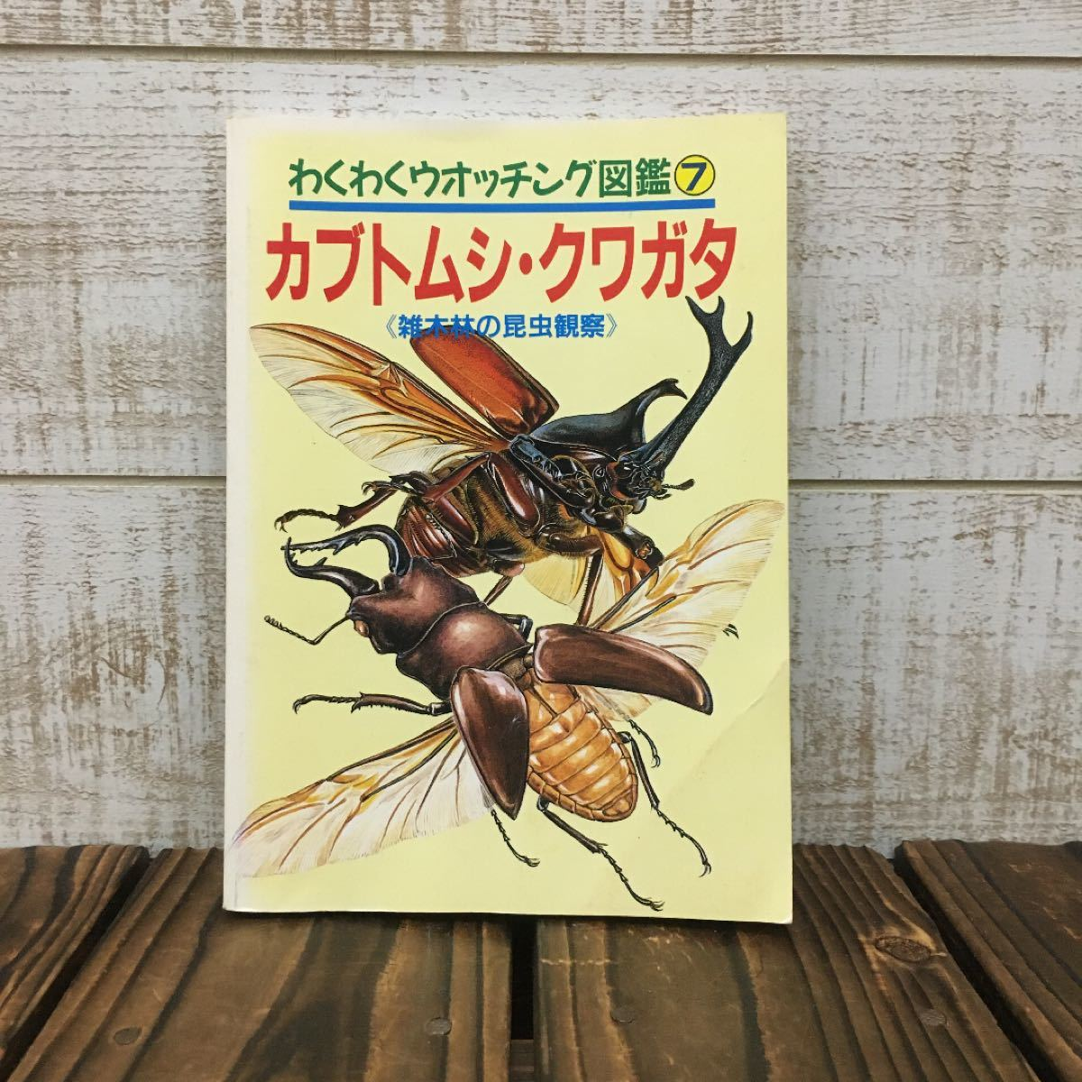 【30年前の図鑑】カブトムシ・クワガタ 学研