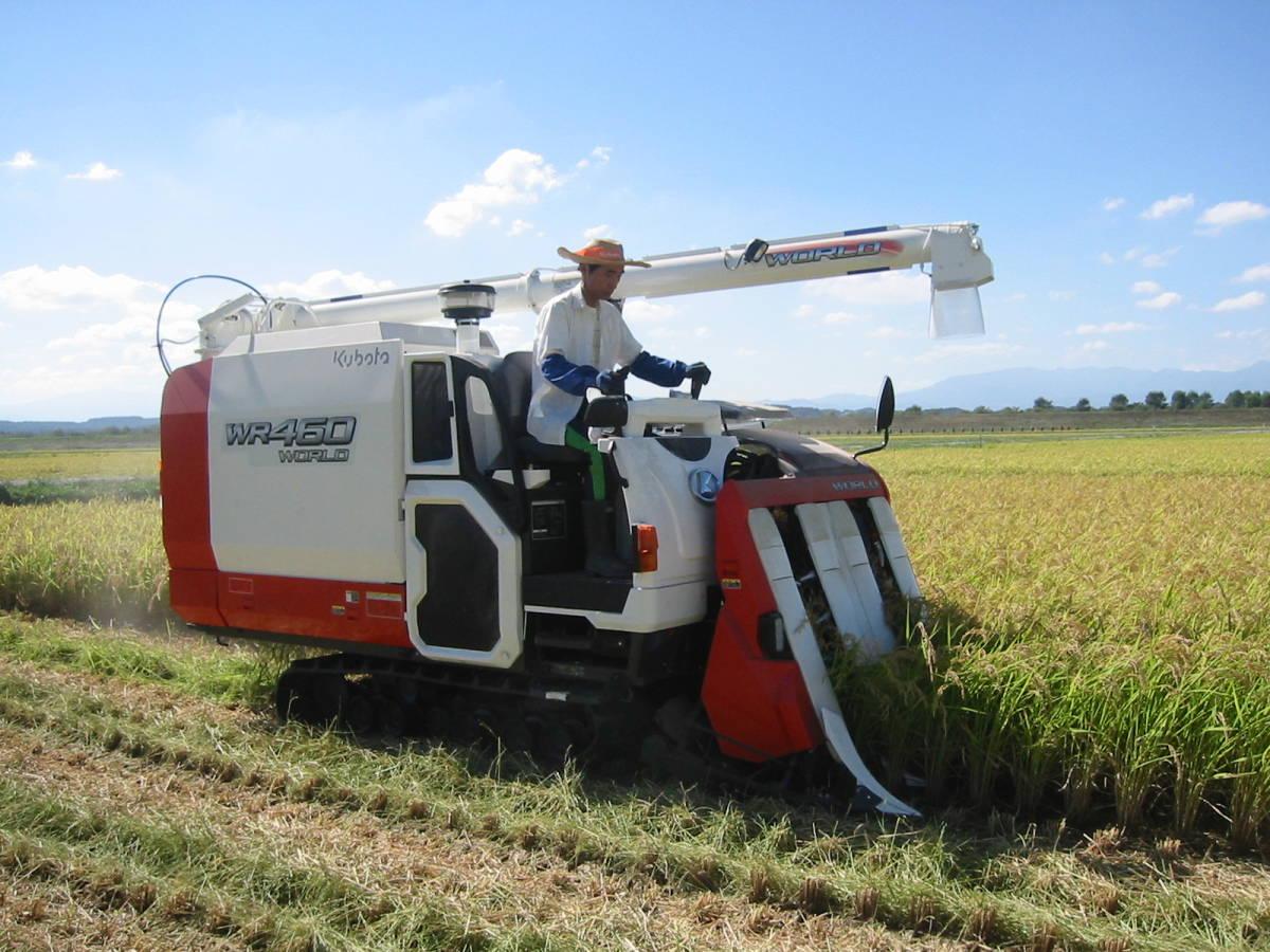 新米できました 白米20kg 令和3年産米 岩手県奥州市前沢産ひとめぼれ 農家直売_今年は5条のコンバインに変えました。