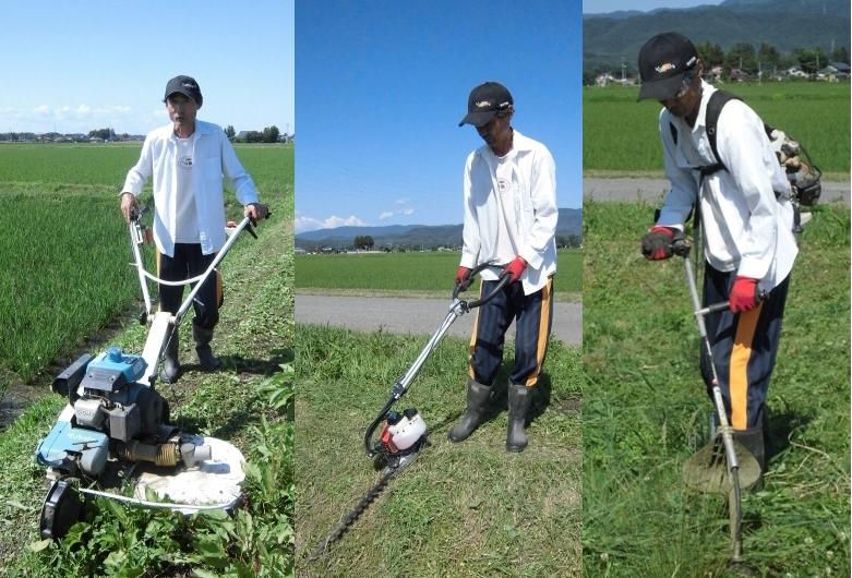 玄米24kg 令和2年産米 岩手県奥州市前沢産ひとめぼれ NO2 農家直売_除草剤は使用せず草刈りしています。