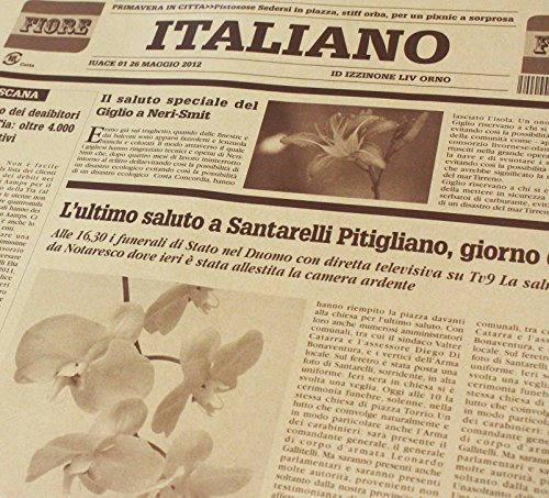 ショコラ 【フジパック】 イタリア 新聞紙柄 包装紙 ラッピング 100枚 おしゃれでかわいいデザイン (ショコラ)_画像4