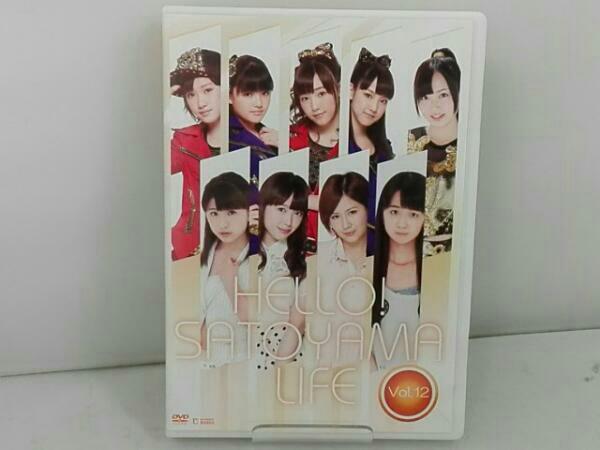 DVD ハロプロ ハロー!SATOYAMAライフ Vol.12 モーニング娘。 コンサートグッズの画像
