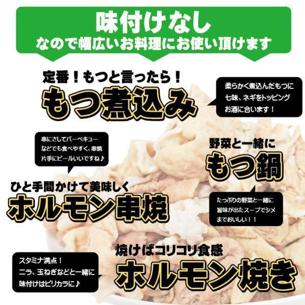 国産豚モツもつ500g 大腸カット済み 訳あり冷凍品 ホルモン格安_画像4