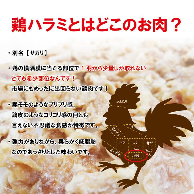 国産鶏ハラミはらみさがり希少部位 480g 【ホルモン】【焼肉】【バーベキュー】【メガ盛り】【サガリ】【さがり】_画像2