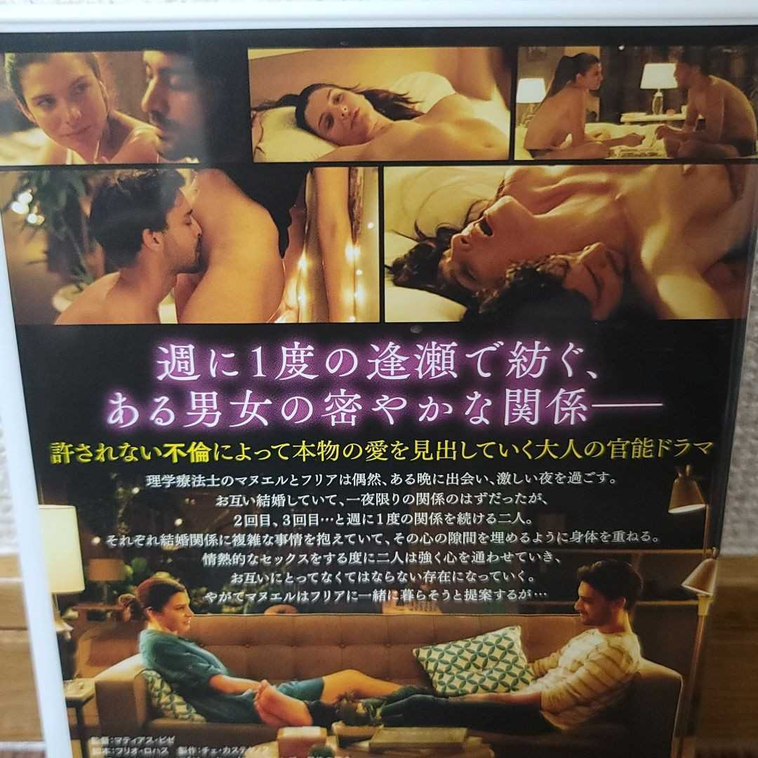 DVD 3本セット 大人
