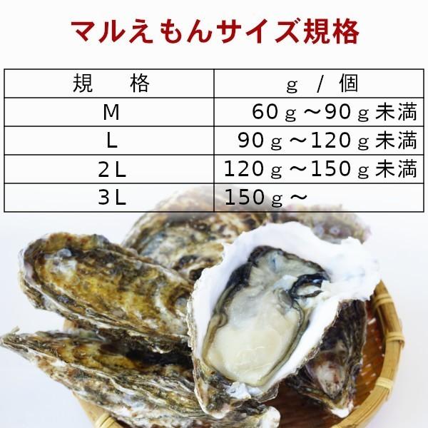 【グルメマートJAPAN】産地直送 北海道厚岸産 殻付き生牡蠣 マルえもん [L(90g~120g)] 20個セット_かき 牡蠣 カキえもん 生牡蠣 殻付き牡蠣