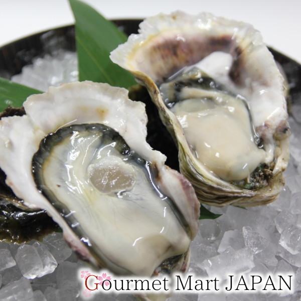 【グルメマートJAPAN】産地直送 北海道厚岸産 殻付き生牡蠣 マルえもん [L(90g~120g)] 20個セット_画像3