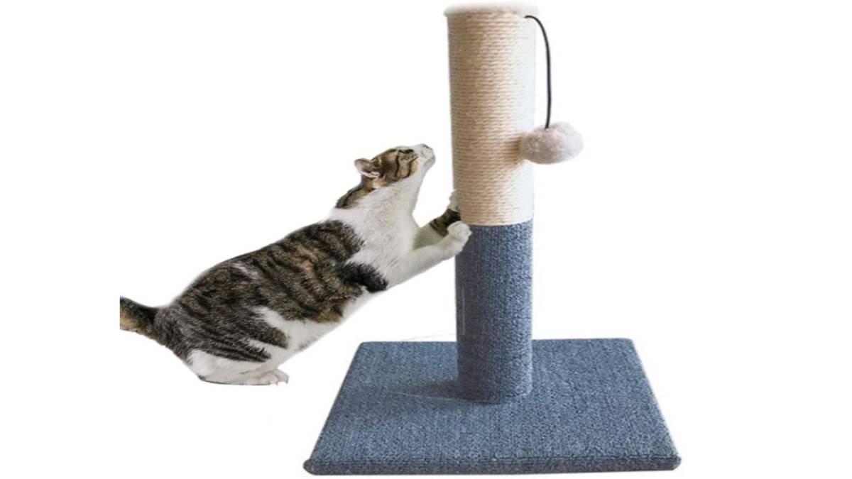 爪とぎポール 小型 爪とぎタワー 猫 爪みがき ストレス解消 室内遊び サイザル麻