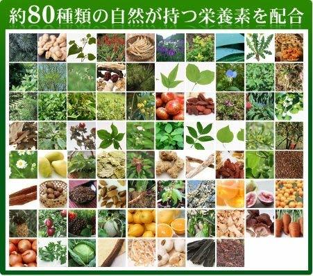約5ヶ月分 150粒 シードコムス 野草酵素 サプリメント 野菜 野草 果物 発酵 熟成 ダイエット (約5ヶ月分 150粒)_画像3