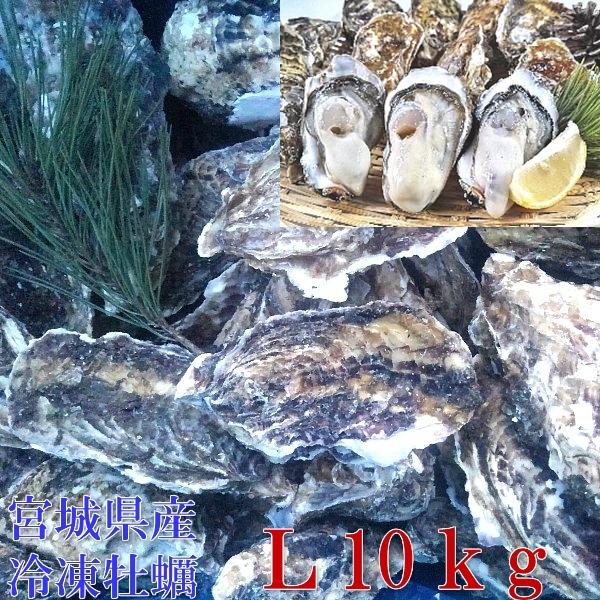 牡蠣 殻付き 牡蠣 あす楽対応!Lサイズ10kg(約73粒)冷凍便 送料無料!10キロ 宮城県産 殻付き牡蠣 殻付き 殻付 カキ 加熱用_画像2