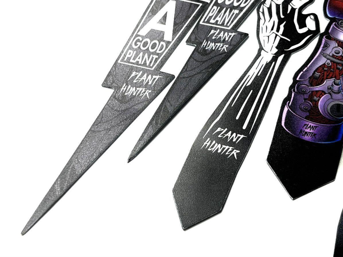 塊根植物パキポディウムグラキリス 亀甲竜園芸ラベル13枚検索 大鉢 中川智治 パキポディウム グラキリス invisible ink raw life factory _画像3