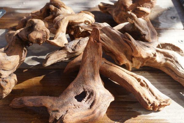 洋蘭 着生植物に 流木 ミニサイズ 1個  エアープランツ チランジア ラン 熱帯魚 レイアウト 爬虫類 両生類_画像1