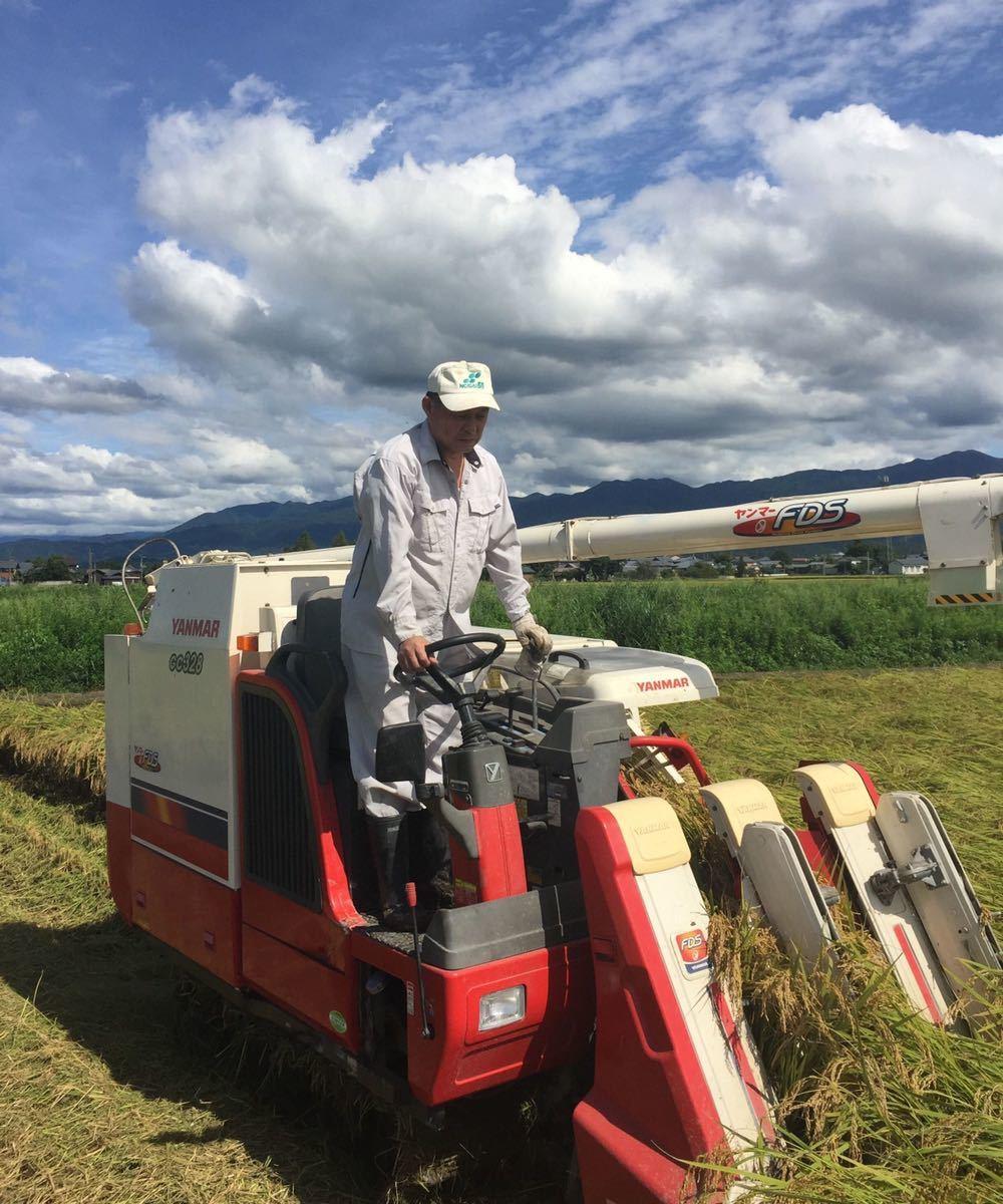 令和3年産新米・新潟コシヒカリ・新潟県認証特別栽培米1等白米5キロ 1個_画像5
