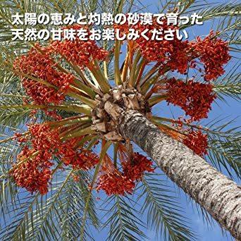 1個 デーツクラウン デーツ ( ナツメヤシ / 無添加 / 砂糖不使用 / 非遺伝子組換え / ドライフルーツ / Khena_画像8