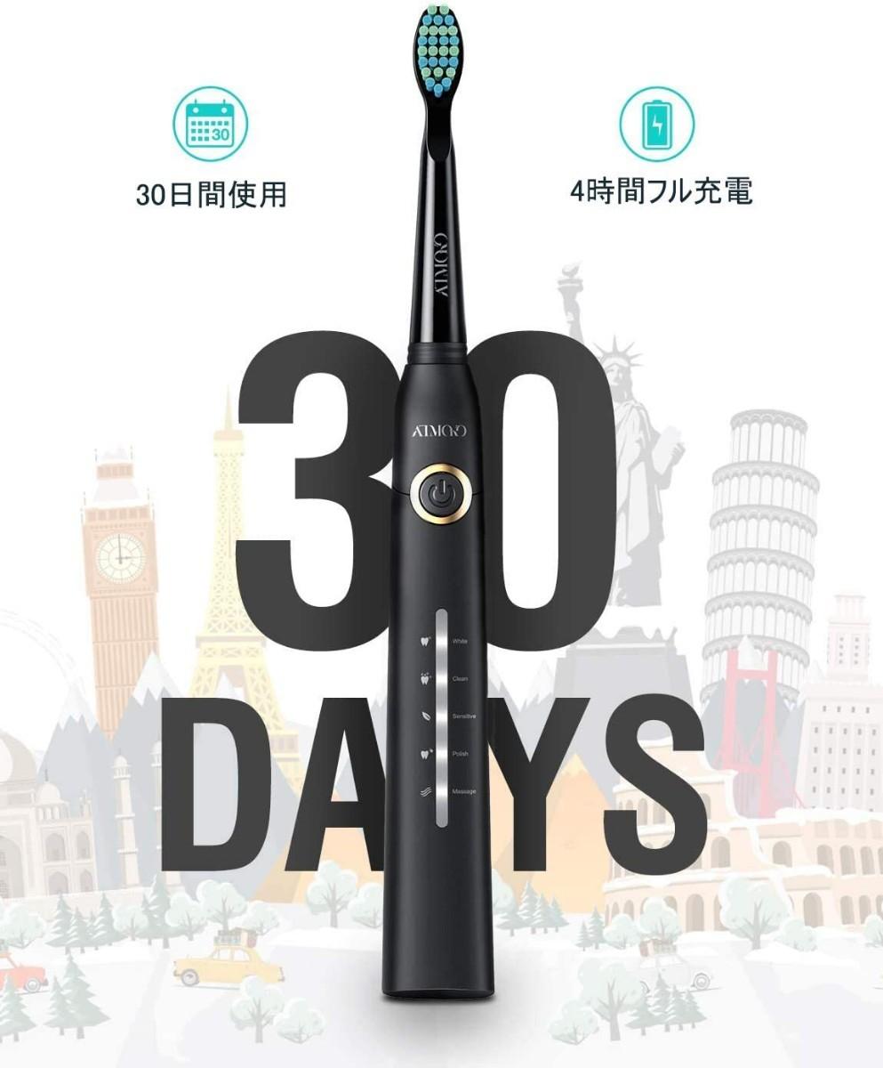 電動歯ブラシ 音波歯ブラシ ソニック 替えブラシ8本 5つのモード 衛生的なキャップ付 オートタイマー機能 IPX7防水